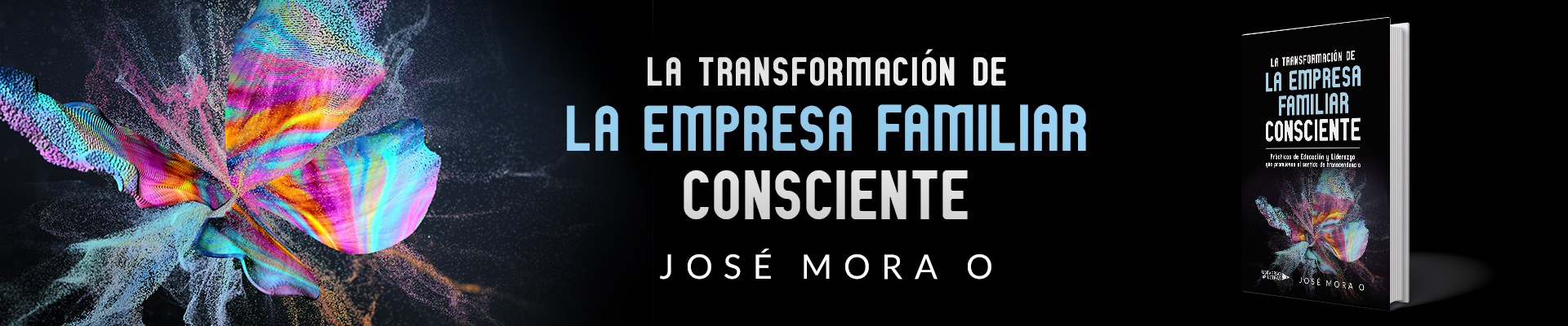 La Transformacion de la Empresa Familiar Consciente